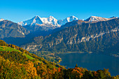 View from Beatenberg to Lake Thun and the Eiger, Mönch and Jungfrau, Bernese Oberland, Canton of Bern, Switzerland