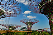 Greenhouse, towers and walk-in platform of Gardens by the Bay, Singapore