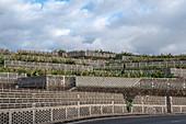 Walls of the banana plantation at Tazacorte, La Palma, Canary Islands, Spain, Europe