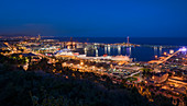 Barcelona with industrial port at night from Jardins del Mirador