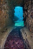 Roman hallway, submerged ancient Roman ruins, Dragonara caves, Miseno, Campi Flegrei (Phlegraean Fields), Campania, Italy, Europe