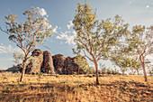 Rocks in Purnululu National Park, Bungle Bungle, Kimberley Region, Western Australia, Oceania,