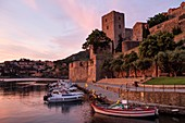 France, Pyrenees Orientales, Cote Vermeille, Collioure, boats moored at the foot of the royal castle