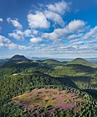 France, Puy de Dome, area listed as World Heritage by UNESCO, the Regional Natural Park of the Volcanoes of Auvergne, Chaine des Puys, Orcines, the summit of the Grand Sarcoui volcano covered with heather, the Puy de Dome volcano in the background (aerial view)
