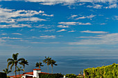 View of a villa with palm trees and the vast Pacific Ocean, Laguna Beach, California, USA