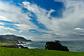 View of the coastline and the Pacific at Carmel Highlands, California, USA