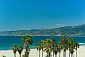 View of palm trees and Pacific beach with Malibu in the background, Santa Monice, California, USA