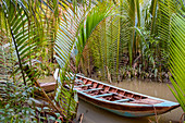 Traditional boat moored in between palm trees in the Mekong Delta, Vietnam.