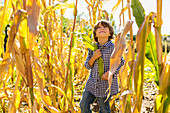 portrait of 6 year old boy in corn field