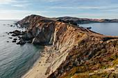 Sea lions basking on the beach on a narrow shore, a rocky coastline.