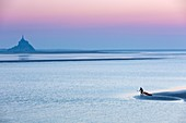 France, Manche, Mont Saint Michel, listed as World Heritage by UNESCO, Kayaker falling in water at sunset on the Bay