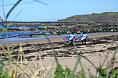Stand-up paddlers with their boards at Milsey Bay, North Berwick, East Lothian
