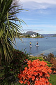 Stand up paddle boarding in the village of Plockton on Loch Carron, Highlands
