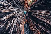 Spiderwalk Spider Walk in the Hancock Gorge in Karijini National Park in Western Australia, Australia, Oceania;