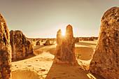 Sunrise at the Pinnacles in the Nambung National Park in Western Australia Australia, Oceania;