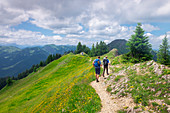Hikers on hiking trail with flowers in the mountains of the Nagelfluhkette in summer, Allgäu Oberstaufen