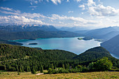Turquoise Walchensee with Sassau island, forest, mountains and clouds, Bavaria