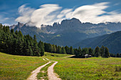 Hiking trail and rose garden group in the Dolomites from Wuhnleger Löschtich, South Tyrol