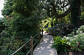 The Lost Gardens of Heligan - south of St Austell at Mevagissey in Cornwall, England, UK