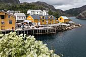 Fischerdorf mit traditionellen Fischerhäusern aus rot und gelb gestrichenem Holz, umgeben von Bergen, Nusfjord, Vestfjord, Lofoten, Norwegen
