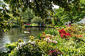 GARDEN, SAINT JAMES PARK, BUCKINGHAM PALACE, LONDON, GREAT BRITAIN, EUROPE