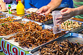 STAND OF GRILLED INSECTS (SILKWORMS, GRASSHOPPERS, CRICKETS, CICADAS), EVENING MARKET, BANG SAPHAN, PROVINCE OF PRACHUAP KHIRI KHAN, THAILAND