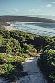 Across from Smiths Beach at Margaret River, Western Australia, Australia, Oceania