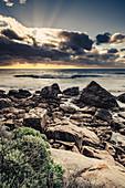 Wilyabrup sea cliffs near Margaret River, Western Australia, Australia, Oceania