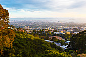 View from the Berkeley Hills onto San Francisco, California, USA