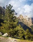 In the Bavella massif, Corsica, France