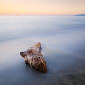 Beach at Ghisonaccia at sunrise, Corsica, France
