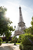 View of the Eiffel Tower with sun flare from Parc du Champs de Mars, Paris, France, Europe