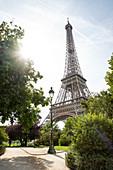 Blick zum Eiffelturm mit Sonnenflare vom Parc du Champs de Mars, Paris, Frankreich, Europa