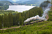 View over the Titisee with Dreiseenbahn, summer, southern Black Forest, Black Forest, Baden-Wuerttemberg, Germany, Europe