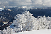 View from Schauinsland to Feldberg, winter day, snow, Southern Black Forest, Black Forest, Baden-Wuerttemberg, Germany, Europe