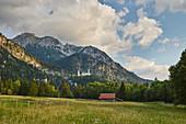 View of Neuschwanstein Castle and barn, Schwangau municipality, Ammer Mountains, Ostallg? U, Bavaria, Germany, Europe