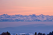 View from H? Chenschwand to the Swiss Alps, Finsterahorn, Eiger, M? Nch, Jungfrau, sunset, winter, southern Black Forest, Black Forest, Baden-W? Rttemberg, Germany, Europe