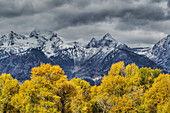 Grand Teton Mountains with Autumn (Fall) colour\nGrand Tetons National Park\nWyoming. USA\nLA006677
