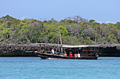 Traditional tourist sailing boat in front of a mangrove off the the coast of Zanzibar, Unguja Island, Tanzania.\n