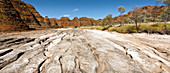 Kimberley, Australia - September 15, 2008: The view of the beehive-shaped sandstone towers in the Purnululu National Park.