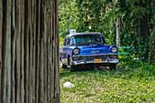Abgestellter blauer Oldtimer in Pinar del Rio, Kuba
