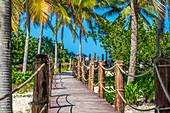 Der Weg zum Strand, Playa Santa Lucia, Kuba