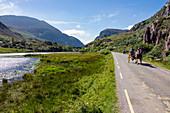 Gap of Dunloe Road, horse carts, County Kerry, Ireland, Europe
