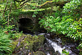 Stone bridge in Derrynane National Historic Park, Caherdaniel, County Kerry, Ring of Kerry, Ireland
