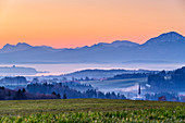 Morning mood over Chiemsee, Hochstaufen and Hochfelln in the background, Ratzinger Höhe, Chiemgau, Chiemgau Alps, Upper Bavaria, Bavaria, Germany