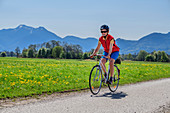 Woman cycling with Hochgern in the background, Chiemsee Cycle Path, Chiemgau, Upper Bavaria, Bavaria, Germany