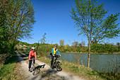 Woman and man ride a bike along the Inn, Inn, Benediktradweg, Upper Bavaria, Bavaria, Germany