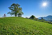 Woman taking a bike break at chapel, Samerberg, Chiemgau, Chiemgau Alps, Upper Bavaria, Bavaria, Germany