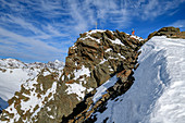 Woman on ski tour climbs up the rocky summit of the Plereskopf, Plereskopf, Matscher Valley, Ötztal Alps, South Tyrol, Italy