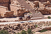 Bedouin rides through the ruins of Petra, Jordan with his two camels